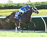 LEXINGTON, KY - OCTOBER 08:  #10 Photo Call (IRE) wins the First Lady at Keeneland on October 8, 2016 in Lexington, Kentucky. (Photo by Jessica Morgan/Eclipse Sportswire/Getty Images)