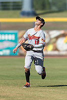 Glendale Desert Dogs second baseman Steve Wilkerson (12), of the Baltimore Orioles organization, prepares to catch a pop fly during an Arizona Fall League game against the Peoria Javelinas at Peoria Sports Complex on October 22, 2018 in Peoria, Arizona. Glendale defeated Peoria 6-2. (Zachary Lucy/Four Seam Images)