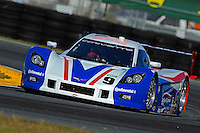 #9 Action Express Chevrolet Corvette of Terry Borcheller, JC France, Joao Barbosa & Max Papis