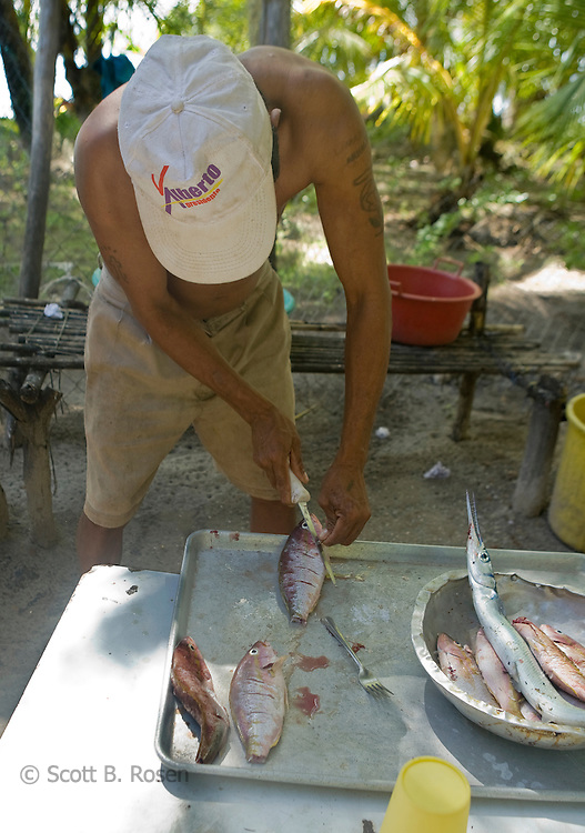 Kuna man prepares fresh jackfish, Isla Pelikano, San Blas Islands, Kuna Yala, Panama