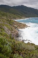 Mittelmeer, Korsika, Frankreich, Küste, Felsküste, mediterran, Strand, Macchia, Macchie, Garigue, Garrigue. Mediterranean Sea, Corsica, France, coast, Mediterranean, beach