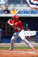 Palm Beach Cardinals third baseman Allen Staton (33) at bat during a game against the Charlotte Stone Crabs on April 10, 2016 at Charlotte Sports Park in Port Charlotte, Florida.  Palm Beach defeated Charlotte 4-1.  (Mike Janes/Four Seam Images)