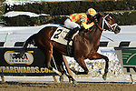 Fierce Boots with Jose Ortiz are winners in the 41st  running of the Busanda Stakes for 3-year old fillies, going 1 mile 70 yards on the inner dirt, at Aqueduct Racetrack.  Trainer Todd Pletcher  Owner Bobby Flay