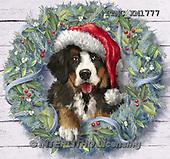 Marcello, CHRISTMAS ANIMALS, WEIHNACHTEN TIERE, NAVIDAD ANIMALES, paintings+++++,ITMCXM1777,#XA# ,dogs,puppies ,christmas wreath