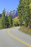 Maroon Creek Road with aspen trees leading to the Maroon Bells Peaks, near Aspen, Colorado, USA John offers fall foliage photo tours throughout Colorado.