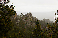 Snow falls in Custer State Park in South Dakota as seen from the Needles Highway on Sunday, May 21, 2017. (Photo by James Brosher)