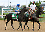 October 13, 2015:  Unbridled Outlaw in the Iroquois stakes at Churchill Downs on 09/12/15.  Candice Chavez/ESW/CSM