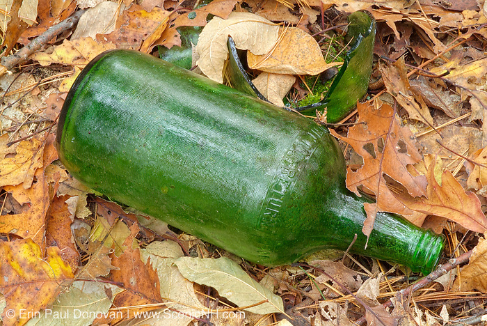Glass bottles thrown in the forest of Pawtuckaway State Park in Nottingham, New Hampshire USA