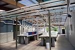 Lizard Island Research Station aquarium area