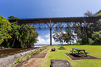 Large bridge over Kolekole Beach Park in Honomu, Big Island.