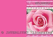Alfredo, FLOWERS, paintings, BRTOCH40565CP,#F# Blumen, flores, illustrations, pinturas