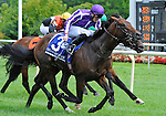 Treasure Beach (no. 3), ridden by Colm O'Donoghue and trained by Aidan O'Brien, wins the 35th running of the grade 1 Secretariat Stakes for three year olds on August 13, 2011 at Arlington Park in Arlington Heights, Illinois.  (Bob Mayberger/Eclipse Sportswire)