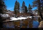 Rock Creek, Little Lakes Valley, Eastern Sierras, Mono County, California