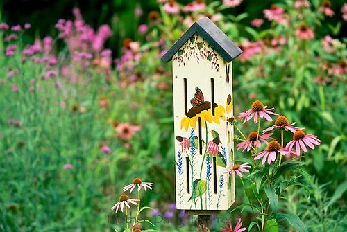 Fanciful hand painted butterfly house in blooming summer garden of native echinacae, purple coneflowers, Missouri USA