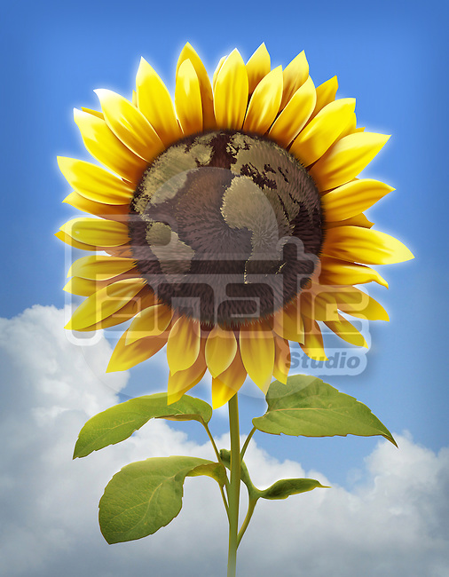 Illustrative image of sunflower with globe imprint representing global care