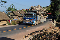 LAO PDR, Oudomxay, Khmu village Houyta, transport of root timber to China / LAOS, Provinz Oudomxay, Dorf Houyta , Transport von Holz und Wurzelholz nach China