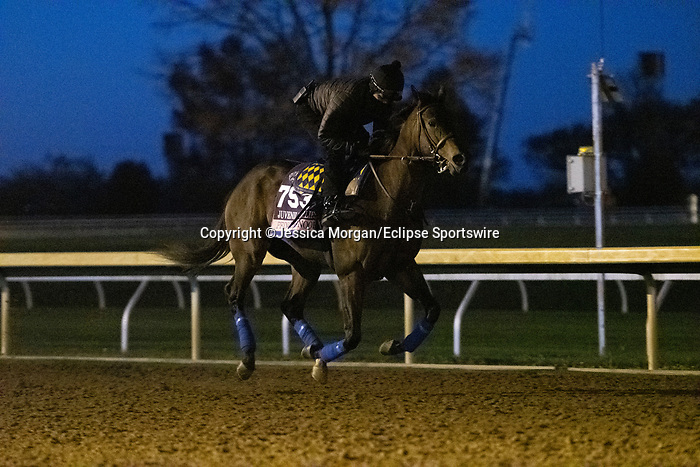 November 4, 2020: Princess Noor, trained by trainer Bob Baffert, exercises in preparation for the Breeders' Cup Juvenile Fillies at Keeneland Racetrack in Lexington, Kentucky on November 4, 2020. Jessica Morgan/Eclipse Sportswire/Breeders Cup