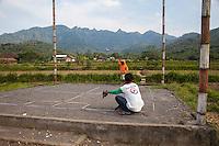 Borobudur, Java, Indonesia.  Racing Pigeon Arriving at the Finish Line.