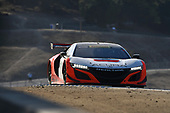Pirelli World Challenge<br /> Intercontinental GT Challenge California 8 Hours<br /> Mazda Raceway Laguna Seca<br /> Sunday 15 October 2017<br /> Ryan Eversley, Tom Dyer, Dane Cameron, Acura NSX GT3, GT3 Overall<br /> World Copyright: Richard Dole<br /> LAT Images