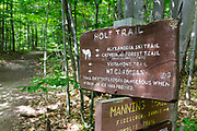 The Holt Trail in Orange, New Hampshire USA. This trail leads to the summit of Cardigan Mountain.