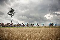 Tour de France 2014 week 1