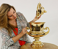 BNPS.co.uk (01202 558833)<br /> Pic: Sworders/BNPS<br /> <br /> An exquisite silver-gilt trophy awarded by the King to the fastest pilot of the day has emerged for sale eight decades later.<br /> <br /> The 'King's Cup' race was founded by George V in 1922 to stimulate the development of light aircraft in the early age of aviation.<br /> <br /> He handed this cup over to the winner of the 1935 edition, the World War One flying ace Flight Lieutenant Tommy Rose.