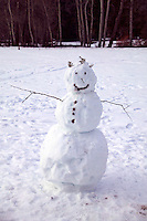 Snowman Yosemite Valley, Californi