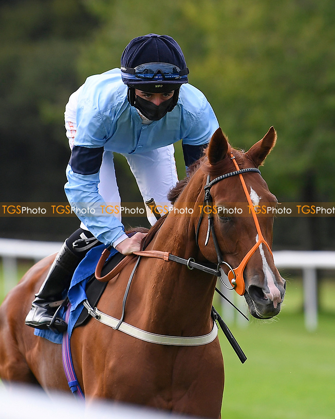 Cirrus ridden by Rossa Ryan goes down to the start of  The Draintech Tankers Nursery Stakes during Horse Racing at Salisbury Racecourse on 11th September 2020