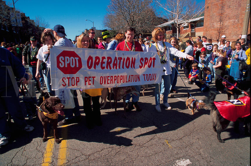 An organization called SPOT (Stop Pet Overpopulation Today) holding its annual parade for dogs. St. Louis, Missouri.