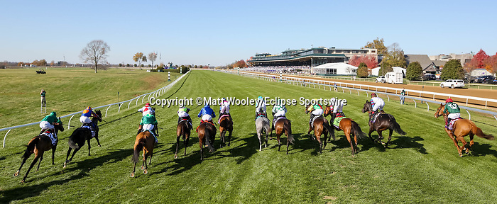 November 7, 2020 : Horses break out of the starting gate the Maker's Mark Filly & Mare Turf on Breeders' Cup Championship Saturday at Keeneland Race Course in Lexington, Kentucky on November 7, 2020. Matt Wooley/Eclipse Sportswire/Breeders' Cup/CSM