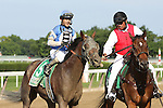 July 04 2015: Effinex with Junior Alvarado win the Grade II Suburban Handicap for 4-year olds & up, going 1 1/4 mile at Belmont Park.  Trainer James Jerkens. Owner Tri-Bone Stables. Sue Kawczynski/ESW/CSM