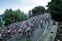 peloton up the Capo Berta<br /> <br /> 112th Milano-Sanremo 2021 (1.UWT)<br /> 1 day race from Milan to Sanremo (299km)<br /> <br /> ©kramon