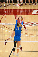 STANFORD, CA - NOVEMBER 17: Stanford, CA - November 17, 2019: Holly Campbell at Maples Pavilion. #4 Stanford Cardinal defeated UCLA in straight sets in a match honoring neurodiversity. during a game between UCLA and Stanford Volleyball W at Maples Pavilion on November 17, 2019 in Stanford, California.