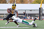 Mountain View vs. Palo Alto Football---November 2, 2012
