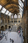 Grossbritannien, England, London: im Natural History Museum | Great Britain, England, London: Central Hall of the Natural History Museum