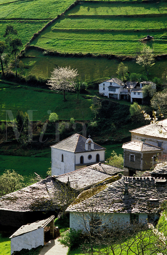Spain. Asturias. Hamlet and fields in spring.