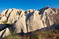 Fairy Chimneys near Göreme [ Goreme ]  , Cappadocia Turkey