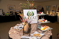 Bayat Foundation Fundraiser, Ponte Vedra Beach, Fl 2012