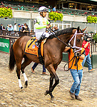 OCT 03, 2021: JESTER CALLS NOJOY post parade in  Gr.1  Frizette Stakes, for 2 year old fillies, at Belmont Park, Elmont, NY.  Sue Kawczynski/Eclipse Sportswire/CSM