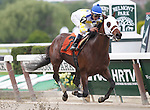 June 8, 2013. #7 Moreno, Jose Ortiz up, wins race five, one mile on the dirt for maidens three years old and upward. The 3-yr-old ghostzapper gelding is trained by E.J. Guillot.  Belmont Park, Elmont, New York (Joan Fairman Kanes/Eclipse Sportswire)