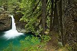 Waterfall, Mount Rainier National Park, Washington