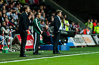 Thursday  03 October  2013  Pictured:Michael Laudrup, Manager of Swansea City and Jeff Saibene, Manager of FC St.Gallen look during the second half<br /> Re:UEFA Europa League, Swansea City FC vs FC St.Gallen,  at the Liberty Staduim Swansea