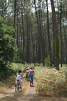 Family mountain biking through Landes Forest, Aquitaine, France.