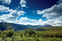 Creag Meagaidh Nature Reserve, Highlands