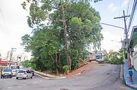SAO PAULO, SP, 19.02.2019 -QUEDA DE ÁRVORE- Uma árvore caiu na Rua Américo Samarone próximo a Rua Vergueiro interditando a via no bairro do Moinho Velho, zona Sul de São Paulo, nesta terça-feira, 19. (Foto: Anderson Lira/Brazil Photo Press)