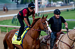 LOUISVILLE, KY - MAY 02: Justify walks onto the track for morning workouts in preparation for the Kentucky Derby at Churchill Downs on May 2, 2018 in Louisville, Kentucky. (Photo by John Vorhees/Eclipse Sportswire/Getty Images)