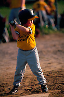 A young male baseball player at bat during a youth recreational Little League game.