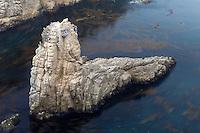 Garrapata State Park, California