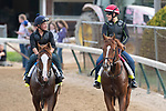 LOUISVILLE, KY - MAY 3:  Free Drop Billy and Promises Fulfilled, both trained by Dale Romans, exercises in preparation for the Kentucky Derby at Churchill Downs on May 3, 2018 in Louisville, Kentucky. (Photo by Eric Patterson/Eclipse Sportswire/Getty Images)