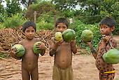 Ngoiwere Village, Mato Grosso State, Brazil. Kisedje (Suya) boys with body paint holding mamao papaya.